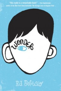 Focus on the Disability Experience: A Review of Wonder